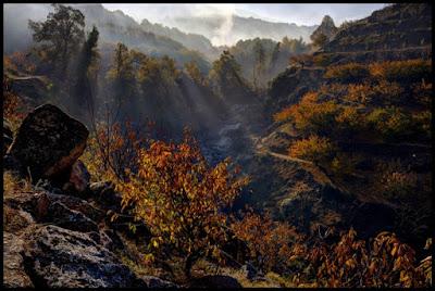"""Ganadores del Concurso de fotografía on-line """"Otoñada Valle del Jerte"""""""