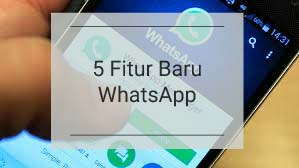 5 Fitur Rahasia Dari Updatetan WhatsApp Terbaru