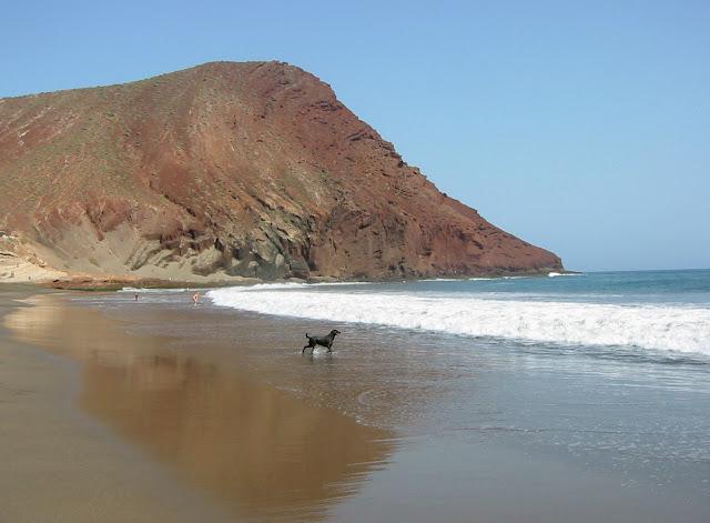 Playa de La Tejita, una delle migliori spiagge di Tenerife