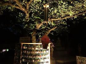 長谷の灯かり