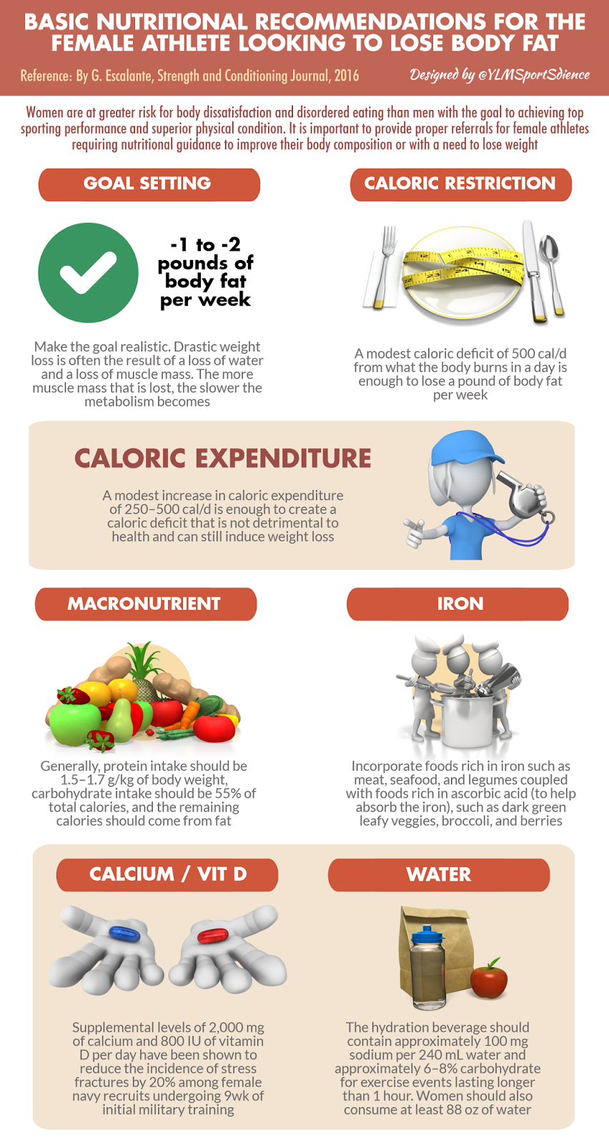 Basic nutritional recommendations for the female athlete ...
