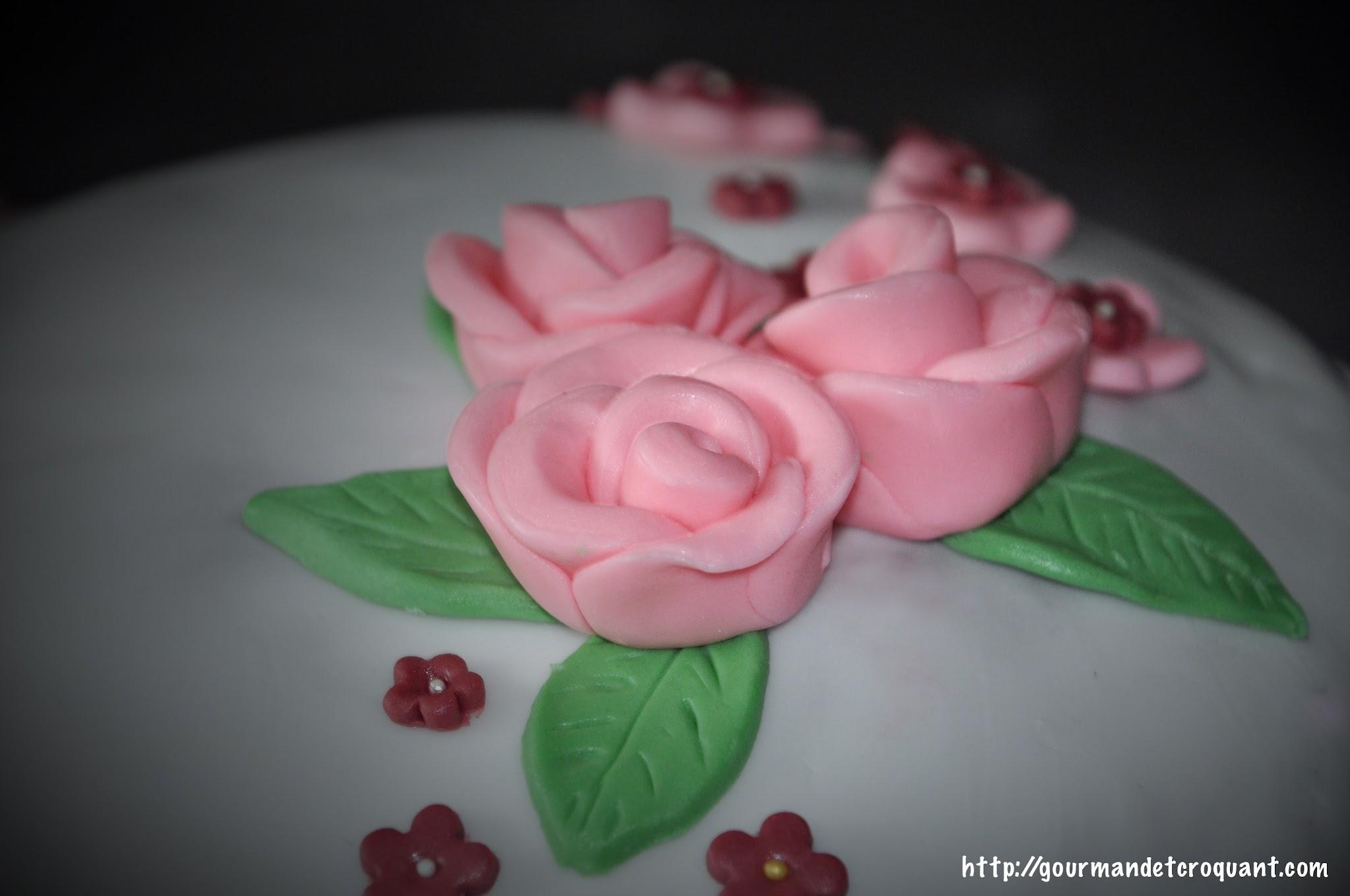 décorations-pâte-à-sucre-débutant