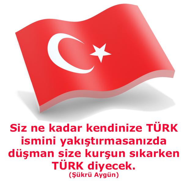 şükrü aygün, türk, türk bayrağı, türkiye, ayyıldız, muhteşem bayrak, bayrak,