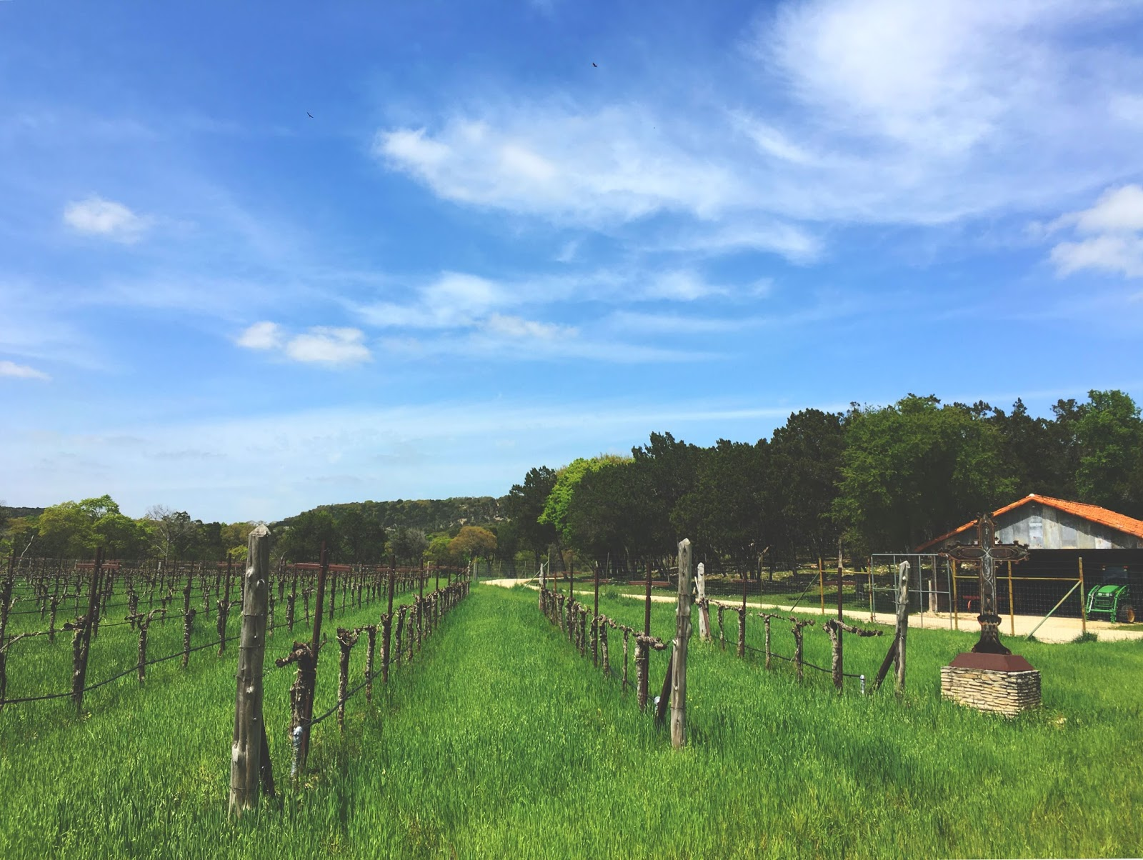 La Cruz de Comal - a winery near San Antonio, Texas