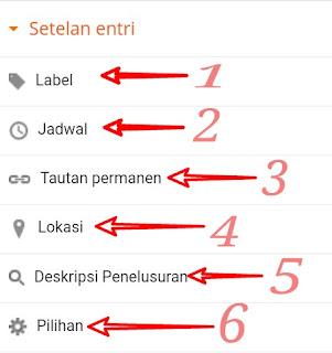Fungsi dan kegunaan menu setting entri Blogger