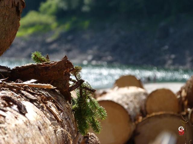 Immagini di paesaggi naturali for Stampe paesaggi naturali