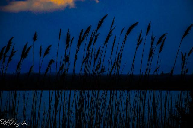 По-залез-слънце-At-sunset