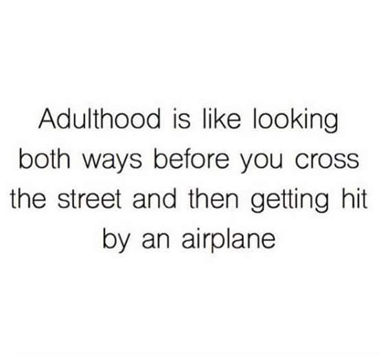 Funny Adulthood Quote Joke Picture