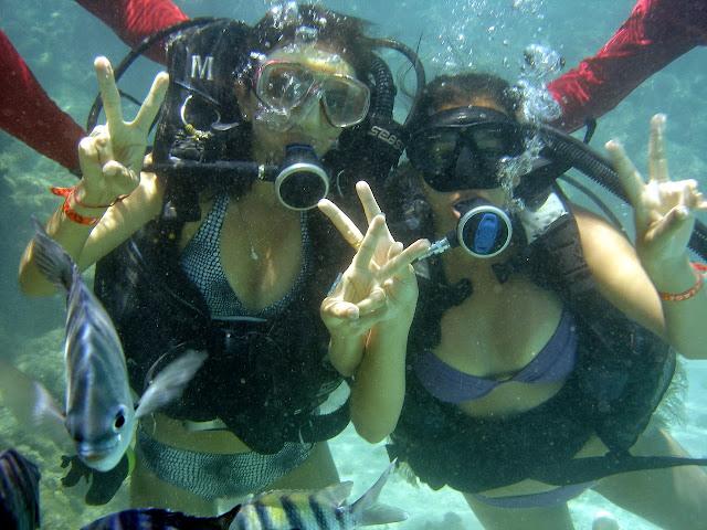 Mergulho em Maragogi - Alagoas