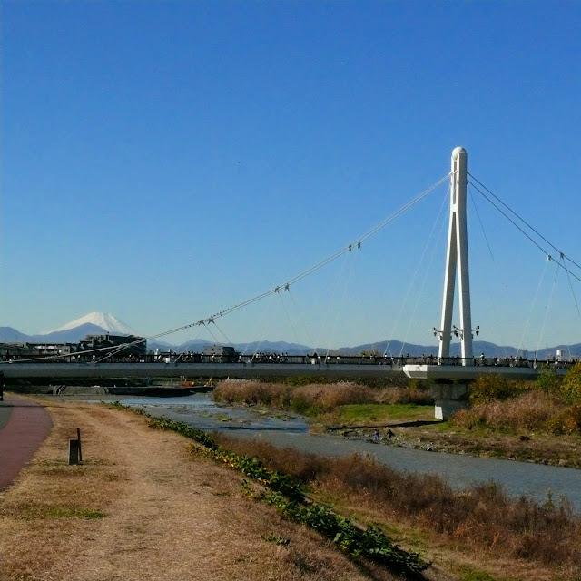 浅川 浅川ふれあい橋 富士山