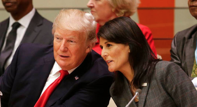 Nikki Haley is a GOP rising star. But some don't like her stealing Trump's spotlight