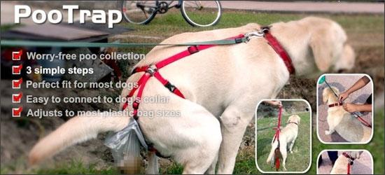pootrap le harnais ramasse crotte pour chiens woof mag 39 le blog des chiens heureux. Black Bedroom Furniture Sets. Home Design Ideas
