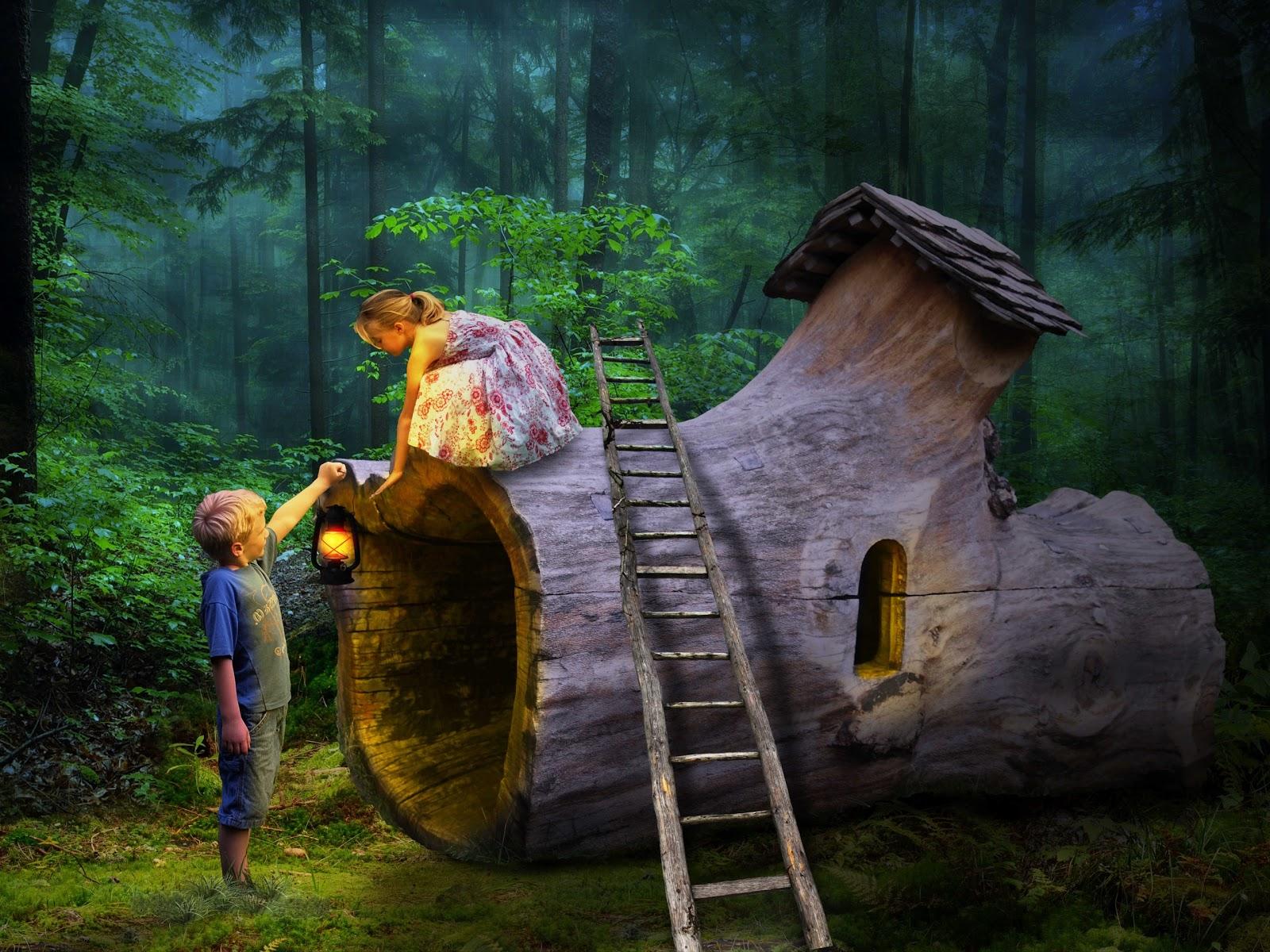 森の中での発見の幻想的な様子