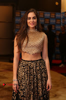 Actress Model Sarah Hopkins Latest Pos in Lehenga Choli at SIIMA Short Film Awards 2017 .COM 0032.JPG