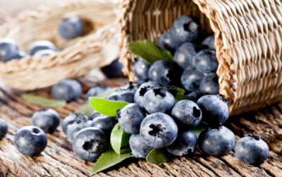 Buah Blueberry