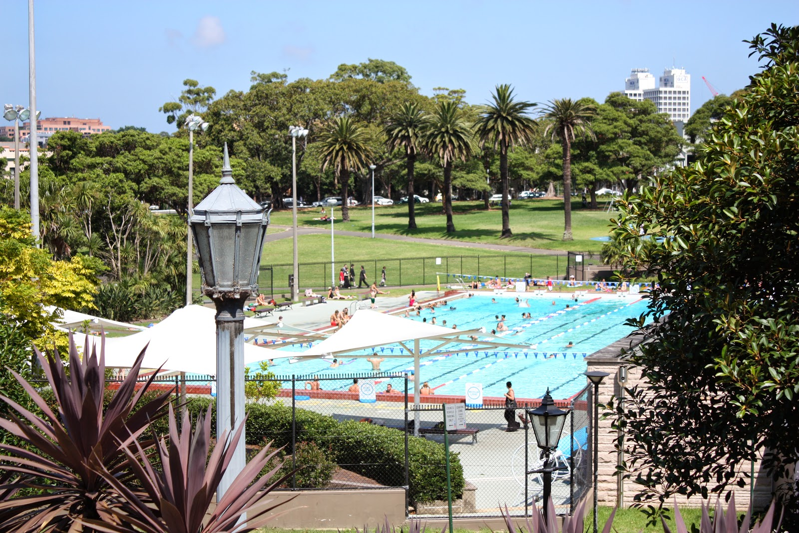 sydney city and suburbs camperdown victoria park pool theme day celebrating summer
