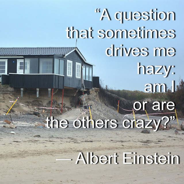A question that sometimes drives me hazy: am I or are the others crazy? - Albert Einstein