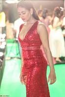 Parul Yadav in Sleeveless Deep Neck Red Gown at IIFA Utsavam Awards March 2017 015.JPG