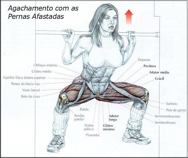 Resultado de imagem para agachamento sumo