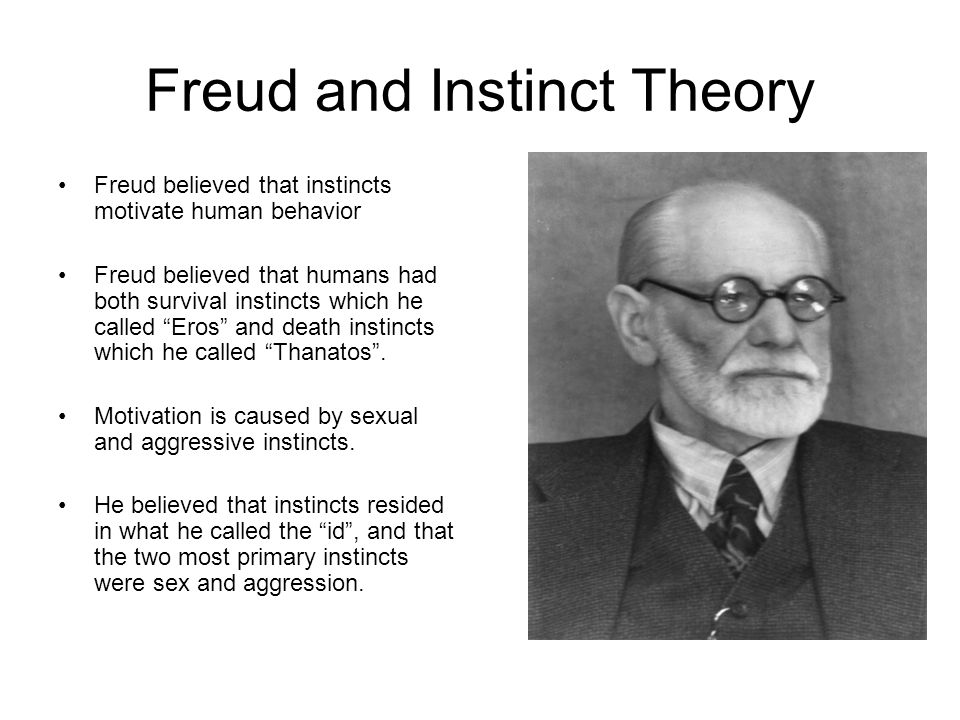freud theories in macbeth Welcome to our freud dream interpretation page in my view, regardless of the fact that modern day academics treat freud's theories with ridicule, the man was a genius.