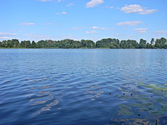 jezioro, Pszczew, las, niebo