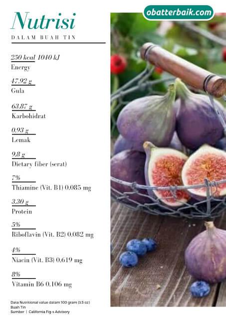 kandungan buah tin