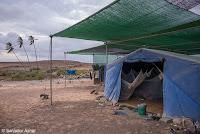 http://www.diariosdeunfotografodeviajes.com/2016/05/campamentos-para-la-proteccion-de.html