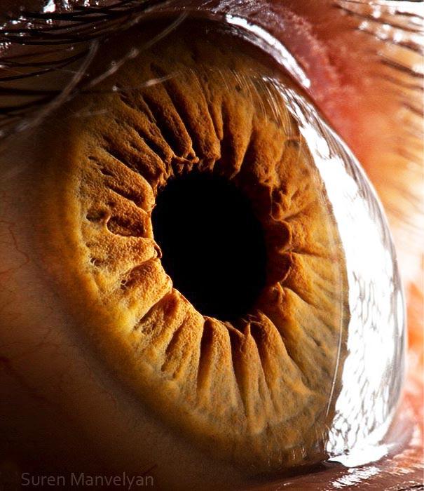 eye-macro-photo-14