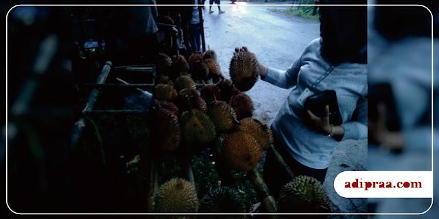 Pilih-pilih durian | adipraa.com