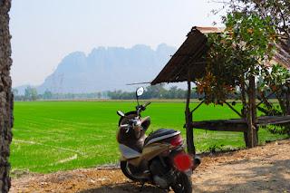 rent a honda scooter