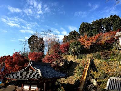 仏像に出会う旅5 岡寺