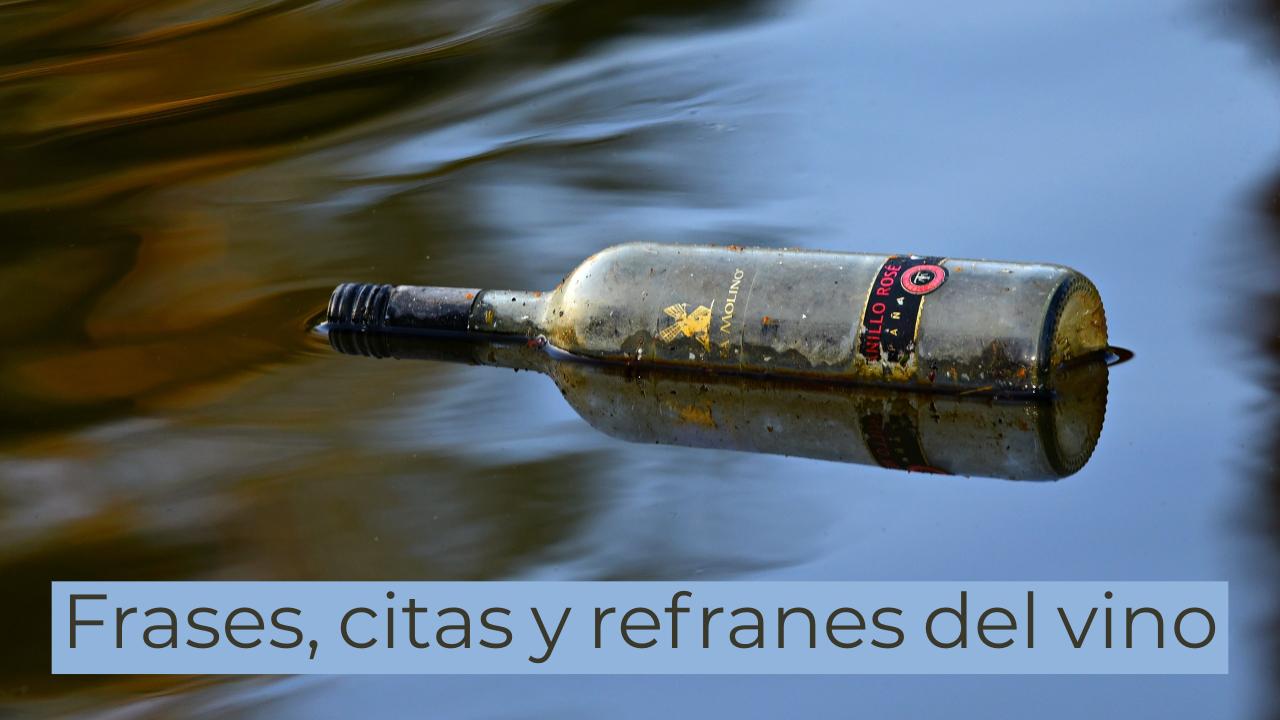 Botella flotando en el agua que contiene quotes de vino
