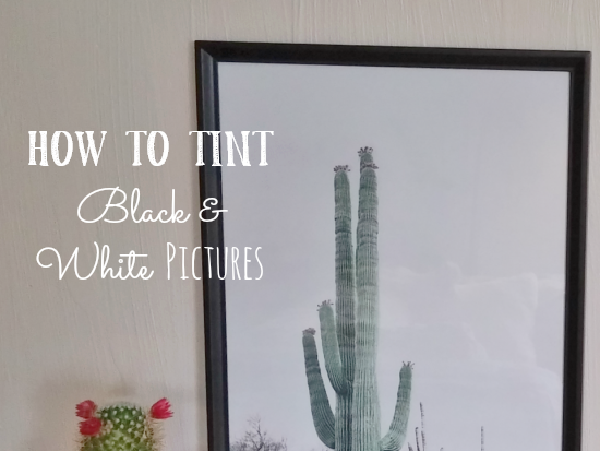 How to Tint Black & White Pictures