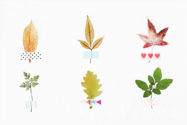 como-hacer-tarjeta-con-hojas-secas-de-otoño-diy-03