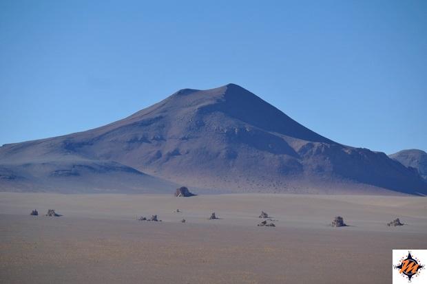 Deserto Salvador Dalì