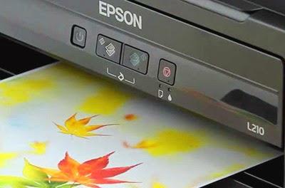 epson l210 price