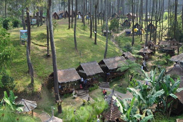 Taman Hutan Wisata Jaya Giri Lembang - Bandung