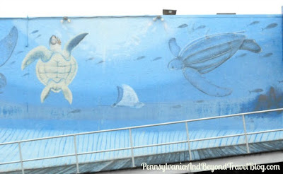 Leatherback Sea Turtles Wall Mural in Wildwood
