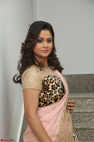 Shilpa Chakravarthy in Lovely Designer Pink Saree with Cat Print Pallu 004.JPG