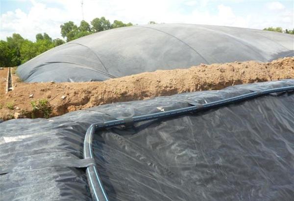 Giải pháp túi biogas HDPE với ngành chăn nuôi Việt Nam