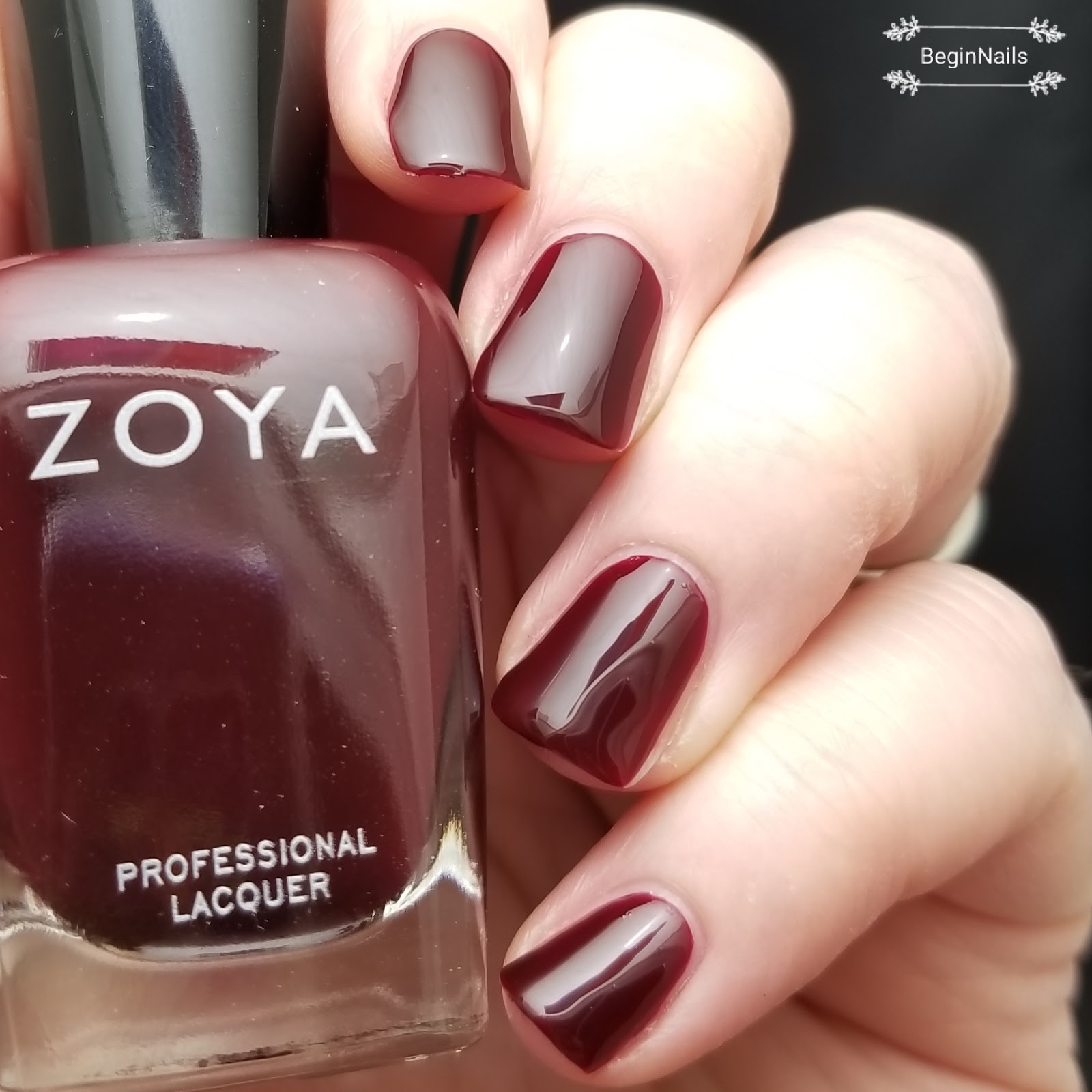 Let\'s Begin Nails: Natural Healthy Concepts - Zoya Sam Review