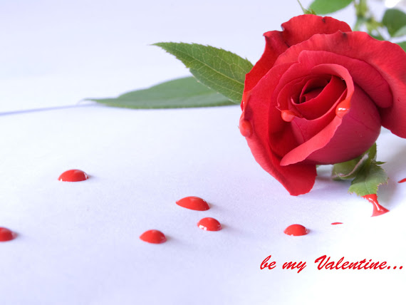 download besplatne pozadine za desktop 1152x864 ruža be my Valentine