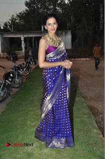 Model Shilpa Reddy Stills in Purple Silk Saree at Gudi Sambaralu 2017 Sri Ramachandra Swami Temple  0063.JPG