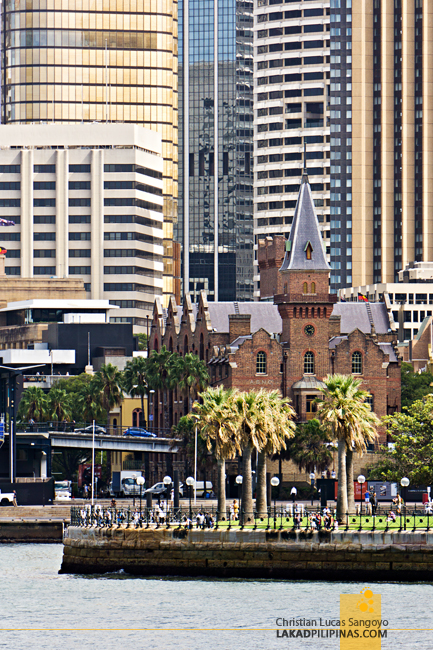 Sydney Harbour Cruise Skyline