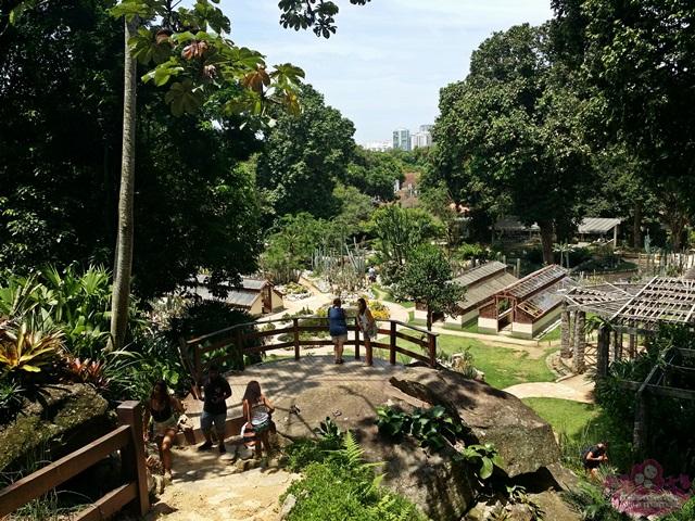 Jardim Botânico - Mirante do Cactário