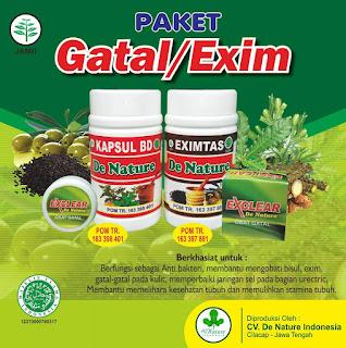 Obat alami untuk gatal-gatal seluruh badan