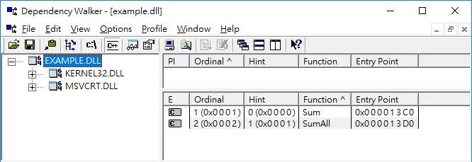 查看 example.dll 的可呼叫函式