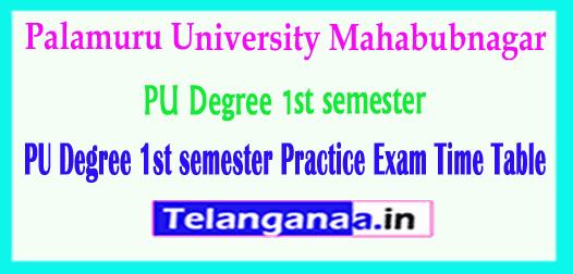 PU Degree Palamuru University 1st semester Practice Exam Time Table