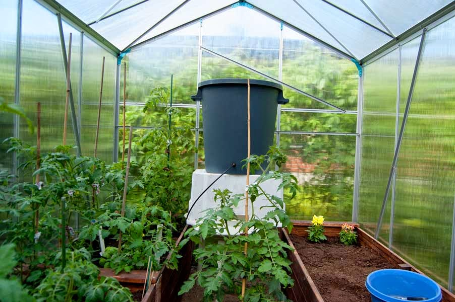 Kasvihuoneen Kastelujärjestelmä
