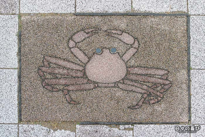 motif crabe trottoir tottori